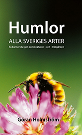 Humlor
