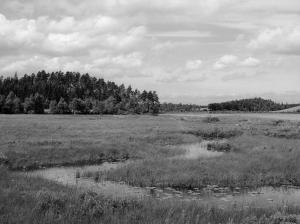 Vittsjö - 1954